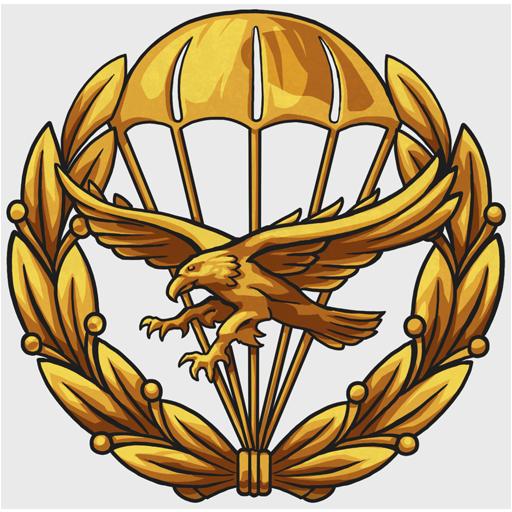 Декаль 323rd Parachute Ranger Squadron